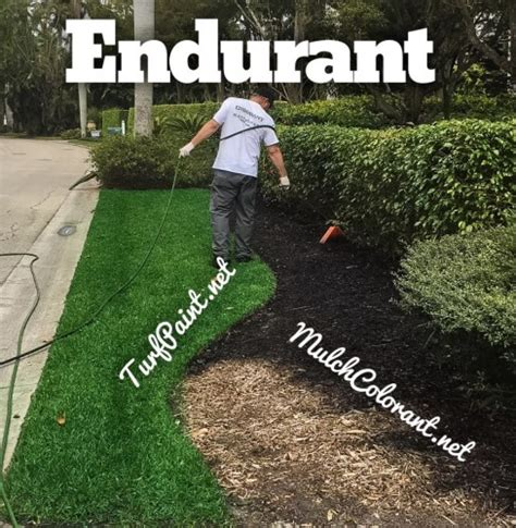replacing mulch when is it time to add more mulch or add colorant turf