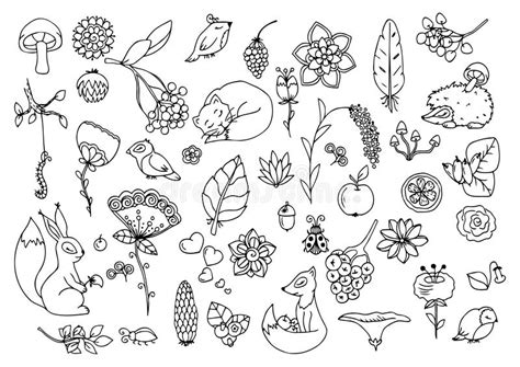 doodle flora fauna vector illustration zen tangle set the forest animals