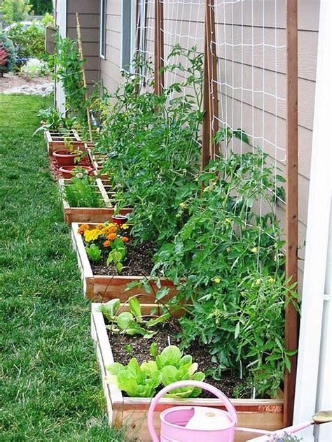 veg garden ideas the 25 best landscaping along fence ideas on