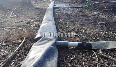 Konektor Selang Ukuran 8 5 Untuk Pompa Dc 12v 24v 12 cara memasang selang drip drip irigasi tetes di lahan