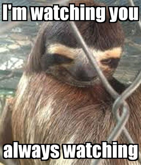 Im Watching You Meme - i m watching you always watching poster lol e keep
