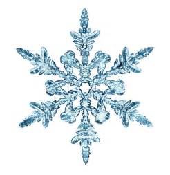 snowflake pictures images and stock photos istock