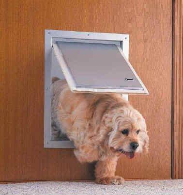 How To Install A Doggie Door by C 243 Mo Instalar Una Puerta Perrito En Una Pared