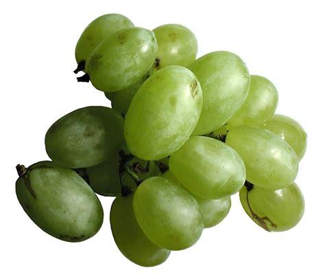 Free photo: Grapes, White, Green, Fruit   Free Image on Pixabay   3447
