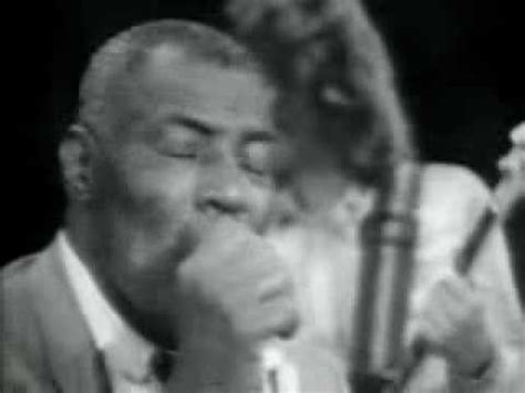 Back Door Howlin Wolf by Howlin Wolf Back Door Funnycat Tv