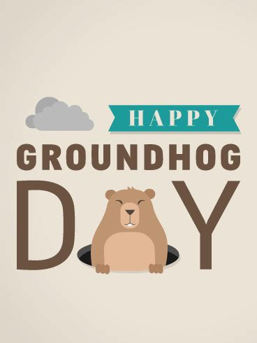 groundhog day cards groundhog day card birthday greeting cards by davia