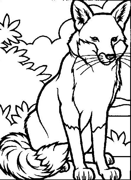 coloring book on tidal free coloring pages of tide pool animals