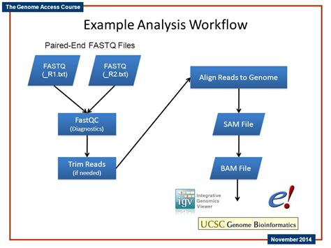 analysis workflow next generation dna sequencing ppt
