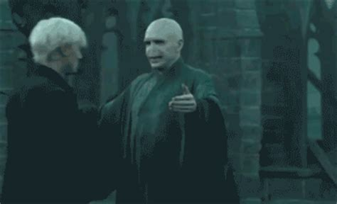 draco malfoy gifs find amp share on giphy
