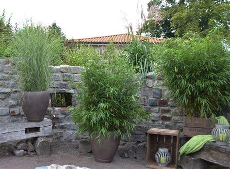 Pflanzen Als Sichtschutz Für Terrasse by Dekor Pflanzen Balkon