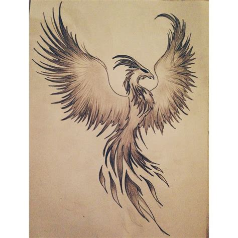 fire phoenix tattoo designs my drawing draw drawing design