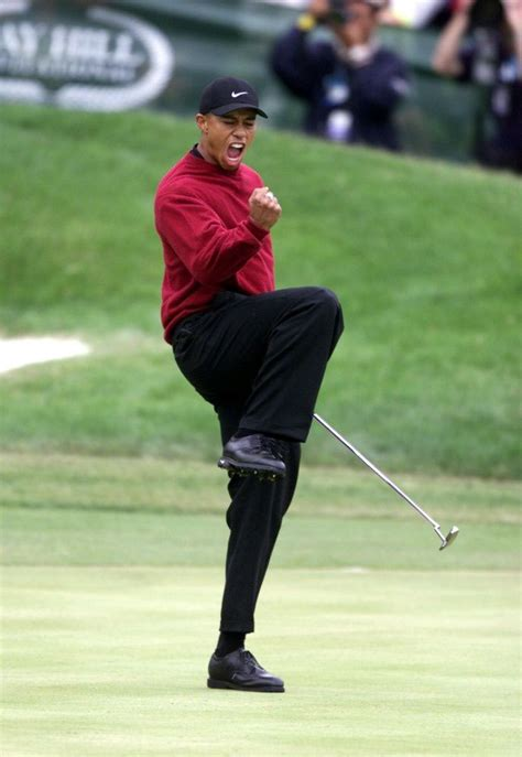 tiger woods swing 2001 25 best ideas about tiger woods on pinterest golf tiger