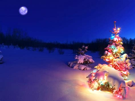christmas themes for your pc 3d christmas desktop backgrounds christmas trees axeetech