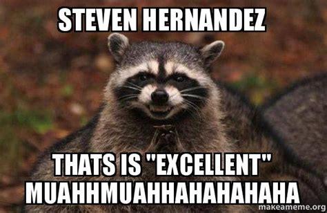 Raccoon Excellent Meme - steven hernandez thats is quot excellent quot muahhmuahhahahahaha