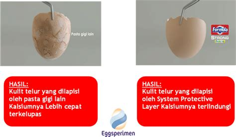Pasta Gigi Formula Strong eggsperimen cara mudah menguji kemuan pasta gigi dalam