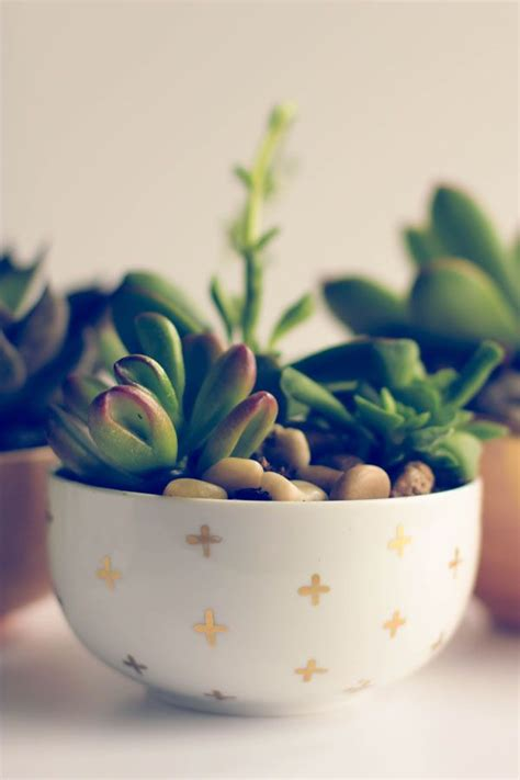 diy succulent planter 20 ideas to decorate desks with succulent pretty designs