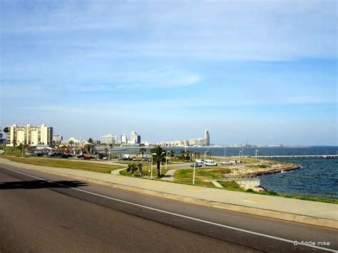 A Place Corpus Christi Drive In Corpus Christi Best Place To Run And Ride A Bike Favorite Places