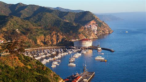 catalina boat ride cost ultimate catalina island beach adventure catalina tours