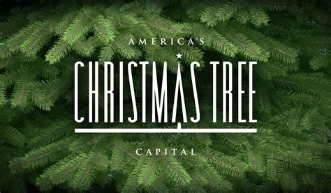 choose cut a tree from america s christmas tree capital