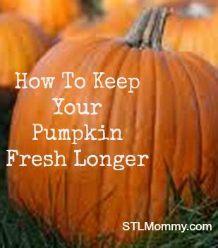 how to keep your pumpkin fresh longer stl mommy