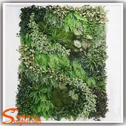 Vertical Garden Buy Green Wall Of Vertical Garden Materials Modules Buy