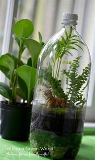 terrarium diy turn an old soda bottle into a miniature rainforest