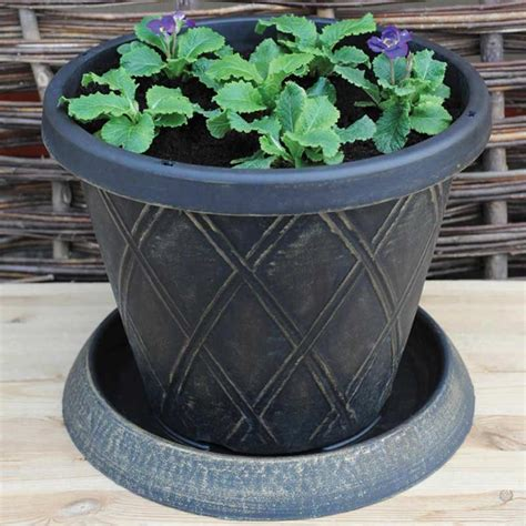 Large Planter Saucers by Thompson Large Patio Pot Saucer X 3 On Sale Fast Delivery Greenfingers