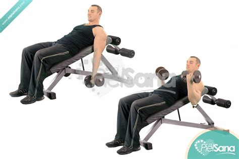 curl incline incline dumbbell curl