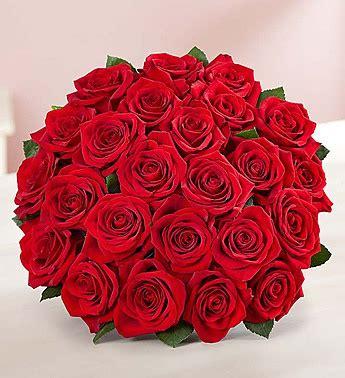 Two Dozen Roses by Two Dozen Roses Sun Tropical Flower Shop