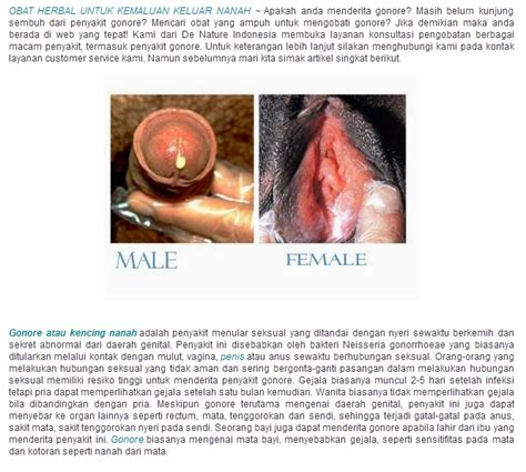 Obat Herbal obat herbal untuk penyakit sipilis