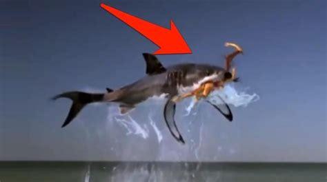 assorbenti interni per ragazze vergini ragazza divorata da uno squalo parodia dello spot di tax