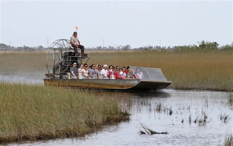 fan boat everglades national park vincent price to be released into florida everglades