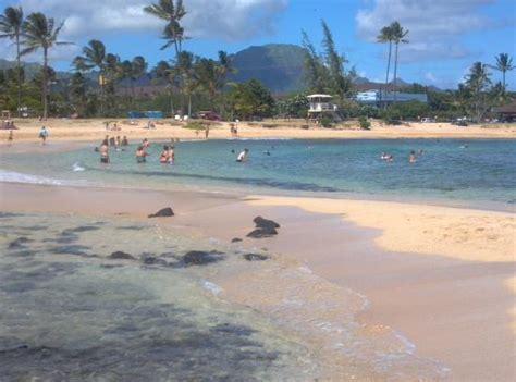 kauai cove cottages kauai cove updated 2017 cottage reviews poipu