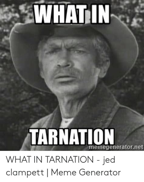 memes  jed clampett jed clampett memes