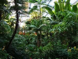 palmen garten palmengarten frankfurt frankfurt tourismus
