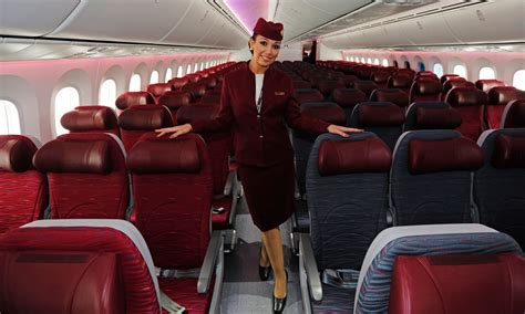 air cabin crew requirements 1000 images about cabin crew on air serbia