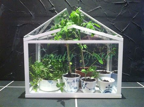 ikea mini greenhouse ikea mini greenhouse royal copenhagen cups garden