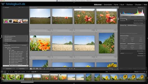 Lightroom Tutorial Katalog | lightroom video tutorial verwaiste fotos im katalog finden