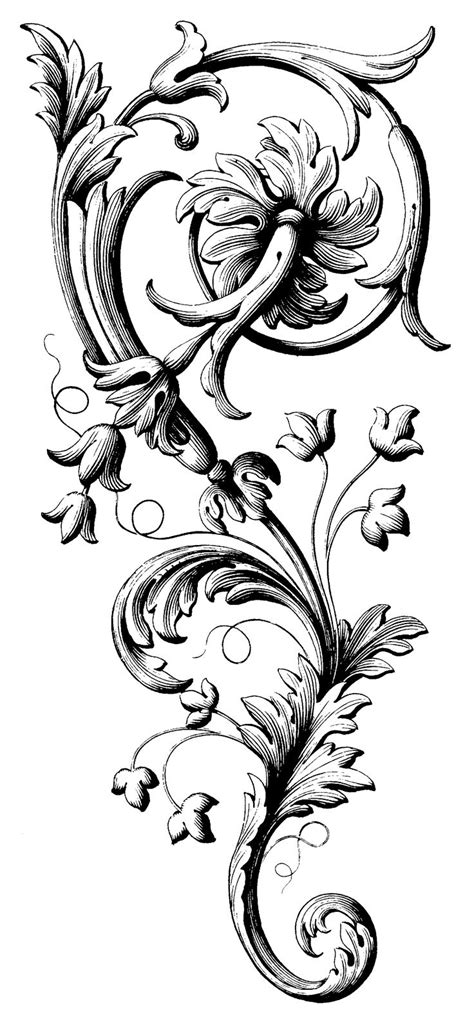 black filigree tattoo 55 best images about acanthus leaves on