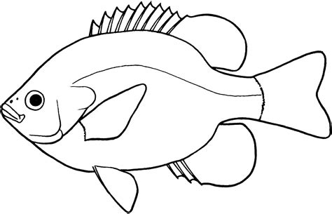 Drawing 7 Lines by Fish Line Drawings Cliparts Co