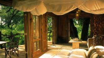 Treehouse Bedroom Jackalberry Tree House Images