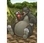Big Baloo By Teaselbone On DeviantArt