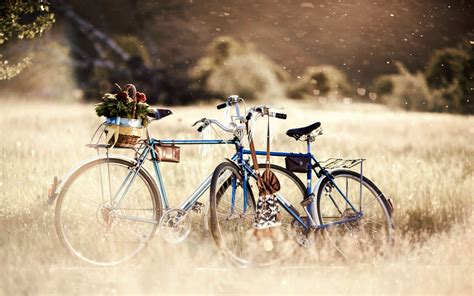 summer bike bike splendor field bokeh summer bicycle nature