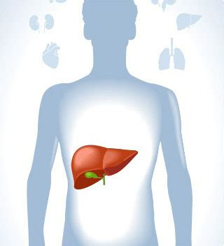 alimenti disintossicanti fegato come depurare il fegato prodotti disintossicanti