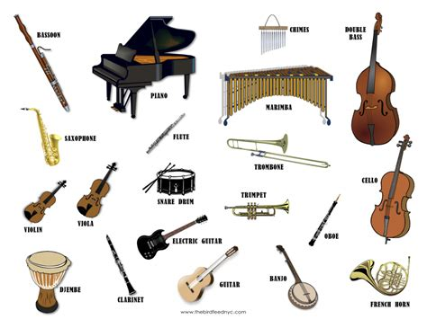 with names musical instruments wonderful images that can be