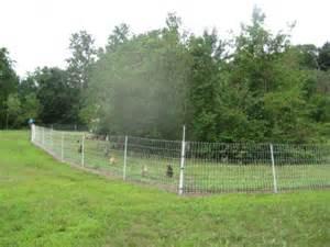Fancy cheap dog fencing ideas 329760 home design ideas