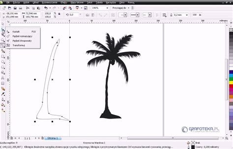 corel draw x4 has stopped working corel draw x4 tutorial wektorowa palma youtube