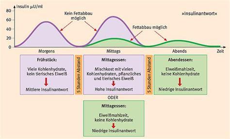 schlank im schlaf diät insulin trennkost nach schlank im schlaf dr detlef
