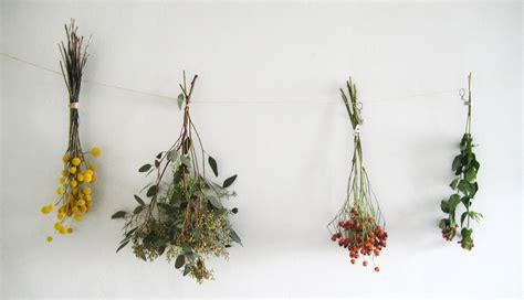 Nice Hourse collections dried flowers debi van zyl