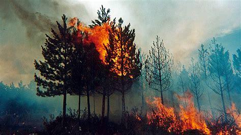 imagenes de desastres naturales ocurridos en mexico 191 conoces todos los tipos de desastres naturales